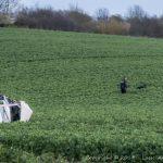Bilist vælter ud på en mark og slynges ud af bilen