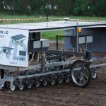 Markrobot sår og luger økologiske roemarker