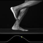 Overset del af foden har skabt mennesket