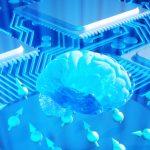 Forskere vil bygge kunstig hjerne